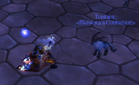 So cute: Tomebuk